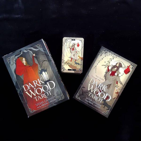 Dark Wood Tarot 11