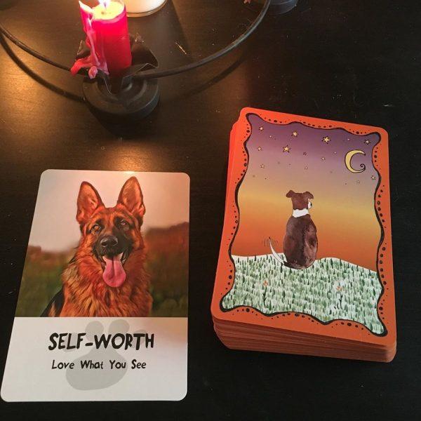 Divine Dog Wisdom Cards 6