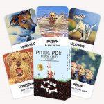 Divine Dog Wisdom Cards 8