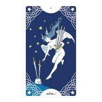 Star Spinner Tarot 10