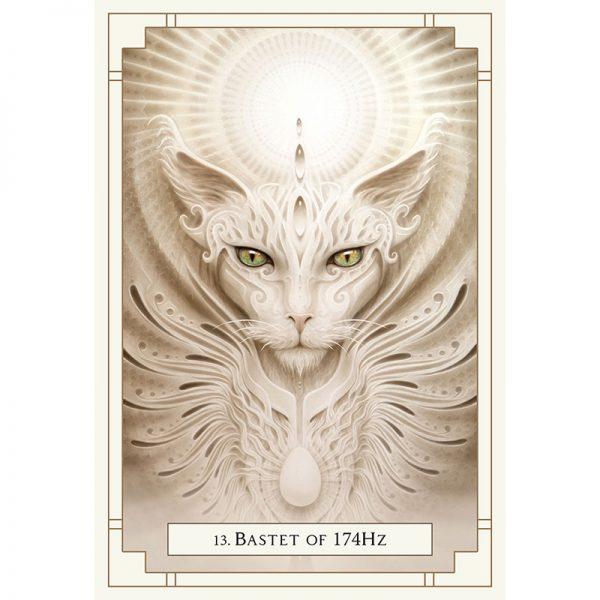 White Light Oracle 5