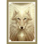 White Light Oracle 7