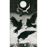 Murder of Crows Tarot 5
