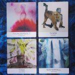 Nature and Soul Yoga Wisdom Cards 13