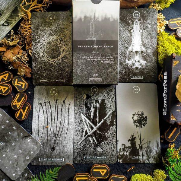 Savran Forest Tarot 7
