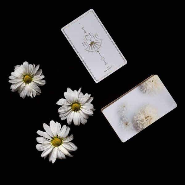 Soul Cards Tarot (White Dahlia) 4
