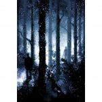 Lost-forest-tarot (21)
