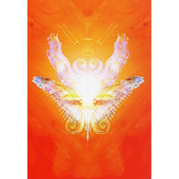 Angel Guide Oracle 8