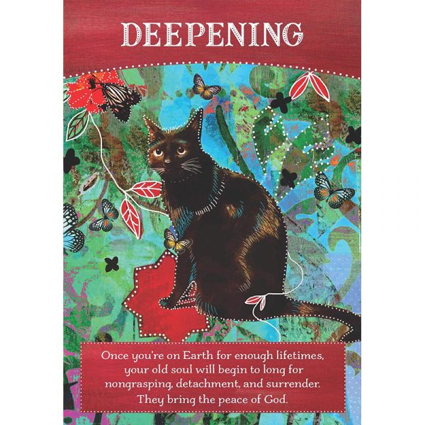 Divine Abundance Oracle Cards 5