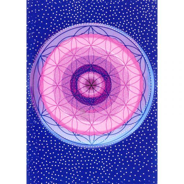 Divine Abundance Oracle Cards 8