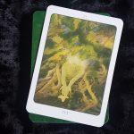 Tree Angel Oracle 10