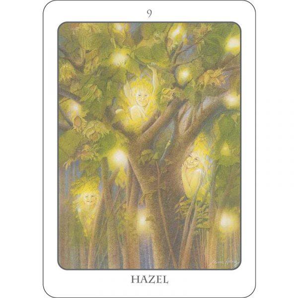 Tree Angel Oracle 5