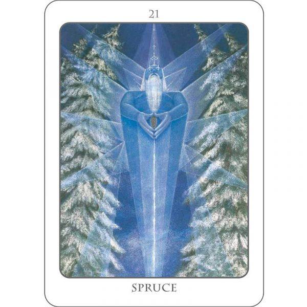 Tree Angel Oracle 8