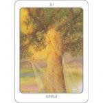 Tree Angel Oracle 9